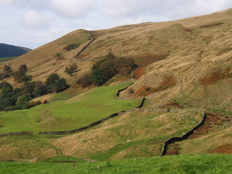 Wall meandering to Rowlee Pasture